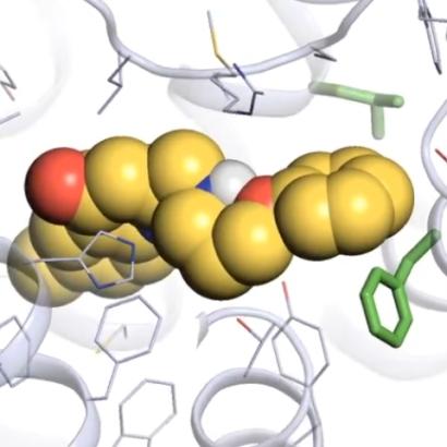 Computer models speed UCSF scientists toward psychiatric drug